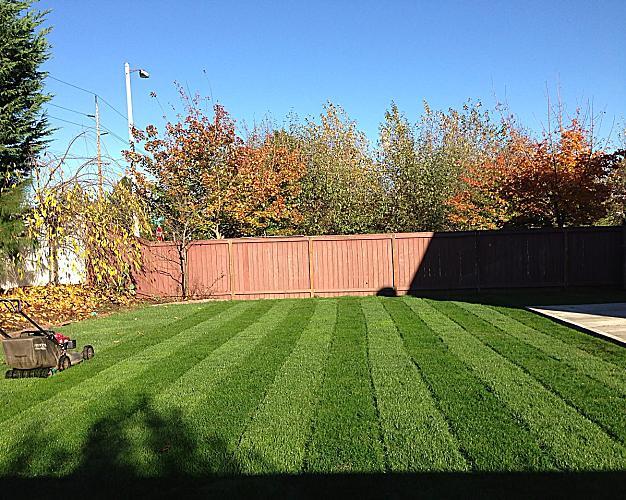portland homes greener lawn