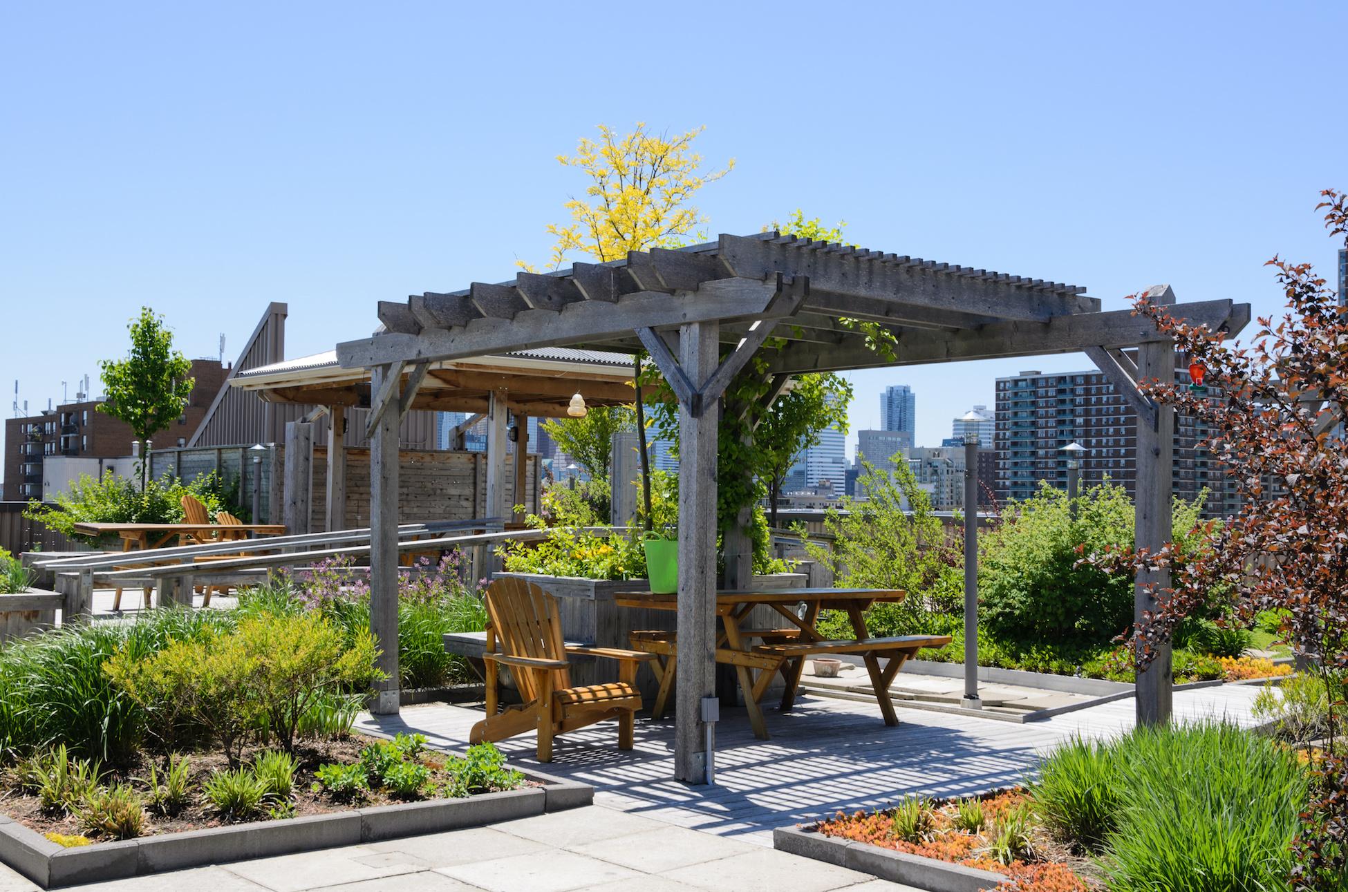 eco-friendly gardening tips
